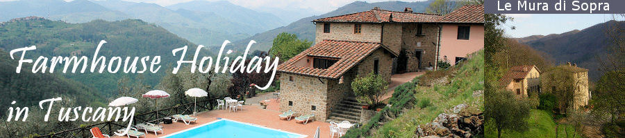 Farmhouse Holiday in Tuscany at Le Mura di Sopra